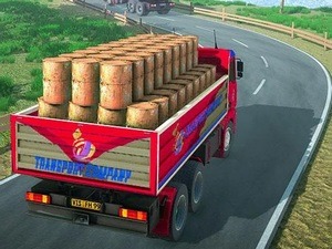 Indian Truck Driver Cargo Duty